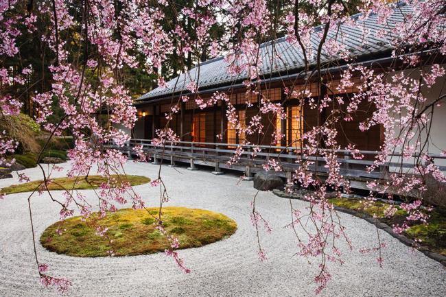 米国ポートランドにある、思わず息をのむ美しい日本庭園