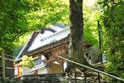 京都「願いが叶うお寺」のヒミツ