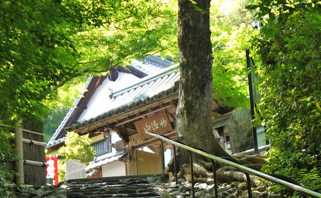京都で300年。「願いが叶うお寺」で有名な鈴虫寺のヒミツ