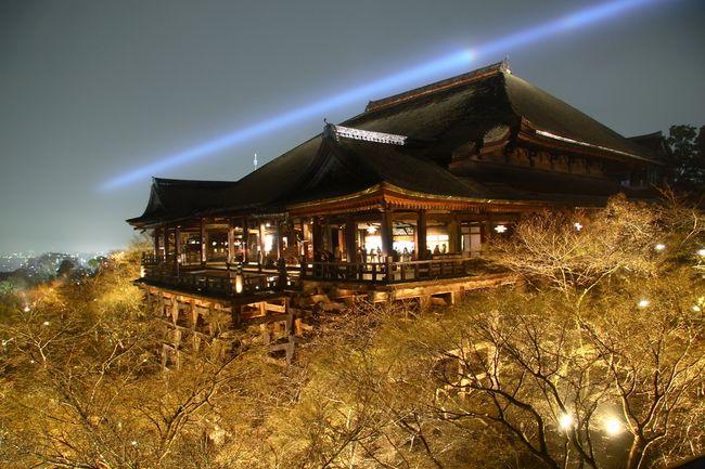 1000年の歴史を持つ清水寺が、たった「400年後」のためにやってること