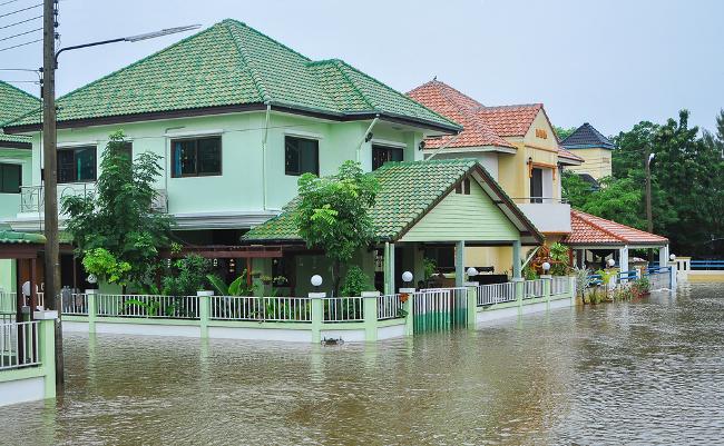 台風やゲリラ豪雨の浸水で泣かないために。火災・損害保険の怖ーい話