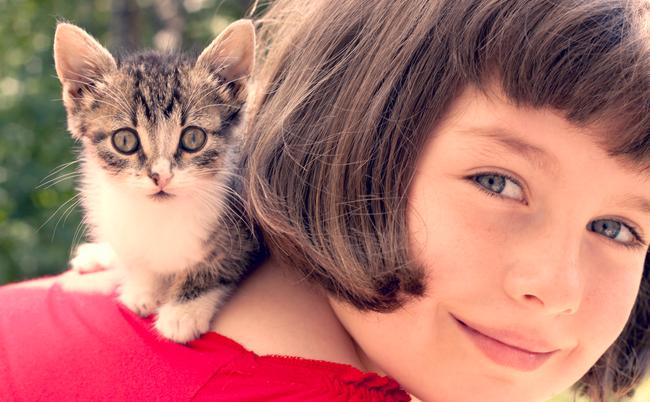 「猫を飼うと頭が悪くなる」は本当か?猫好き医学博士が猛反論