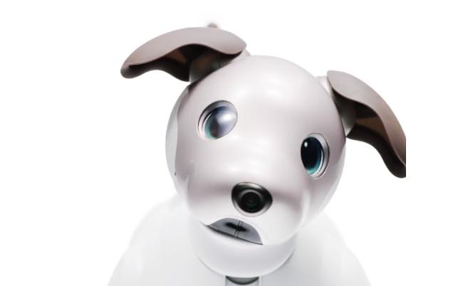 最近、ソニーが面白い。新型aibo成功でブランド復活も夢ではない